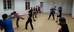 Capoeira manteiga (7)
